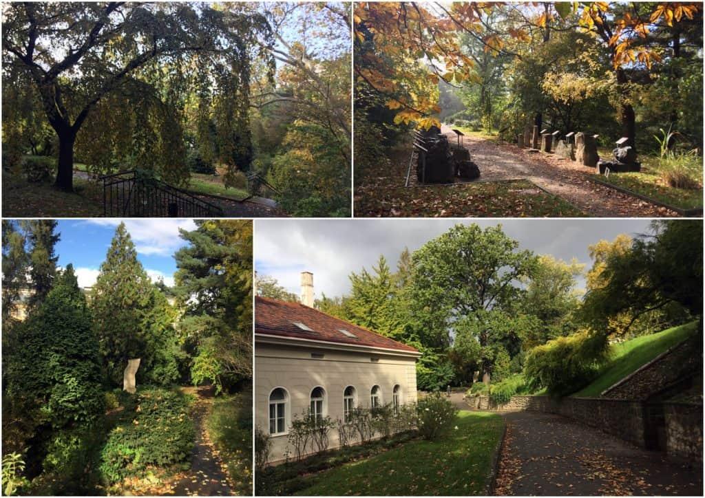Botanická zahrada PF UK
