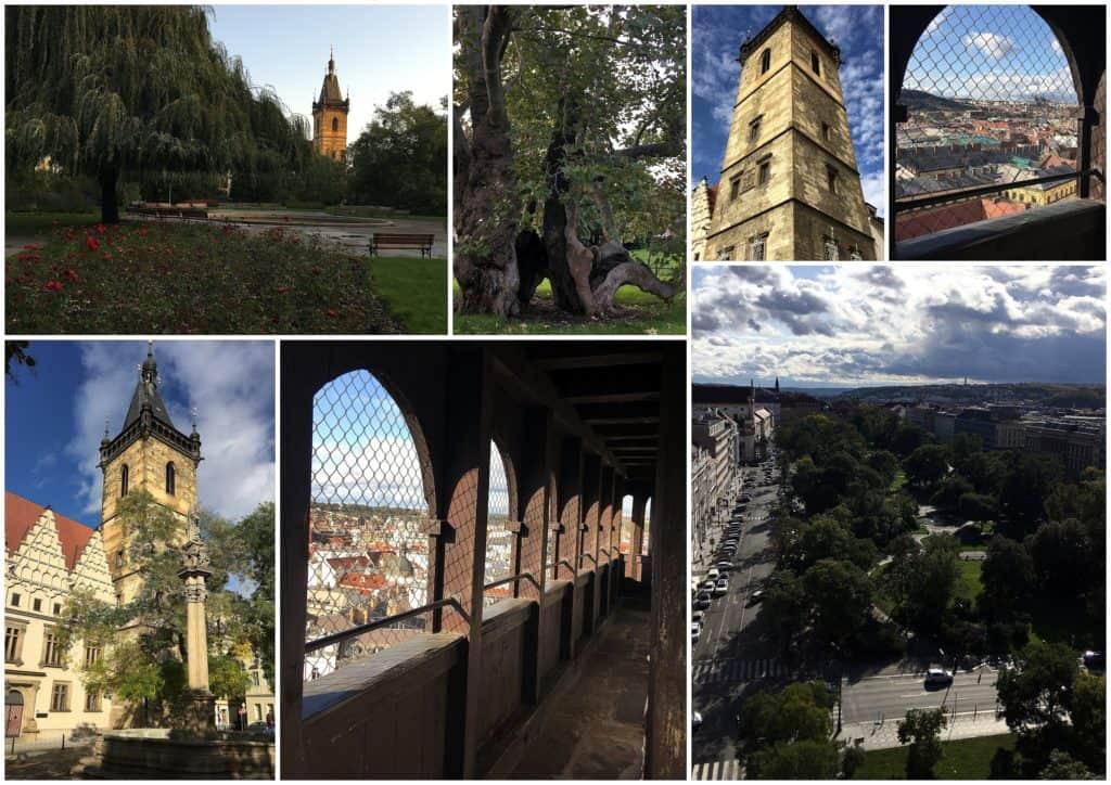 Praha s dětmi: Karlovo náměstí