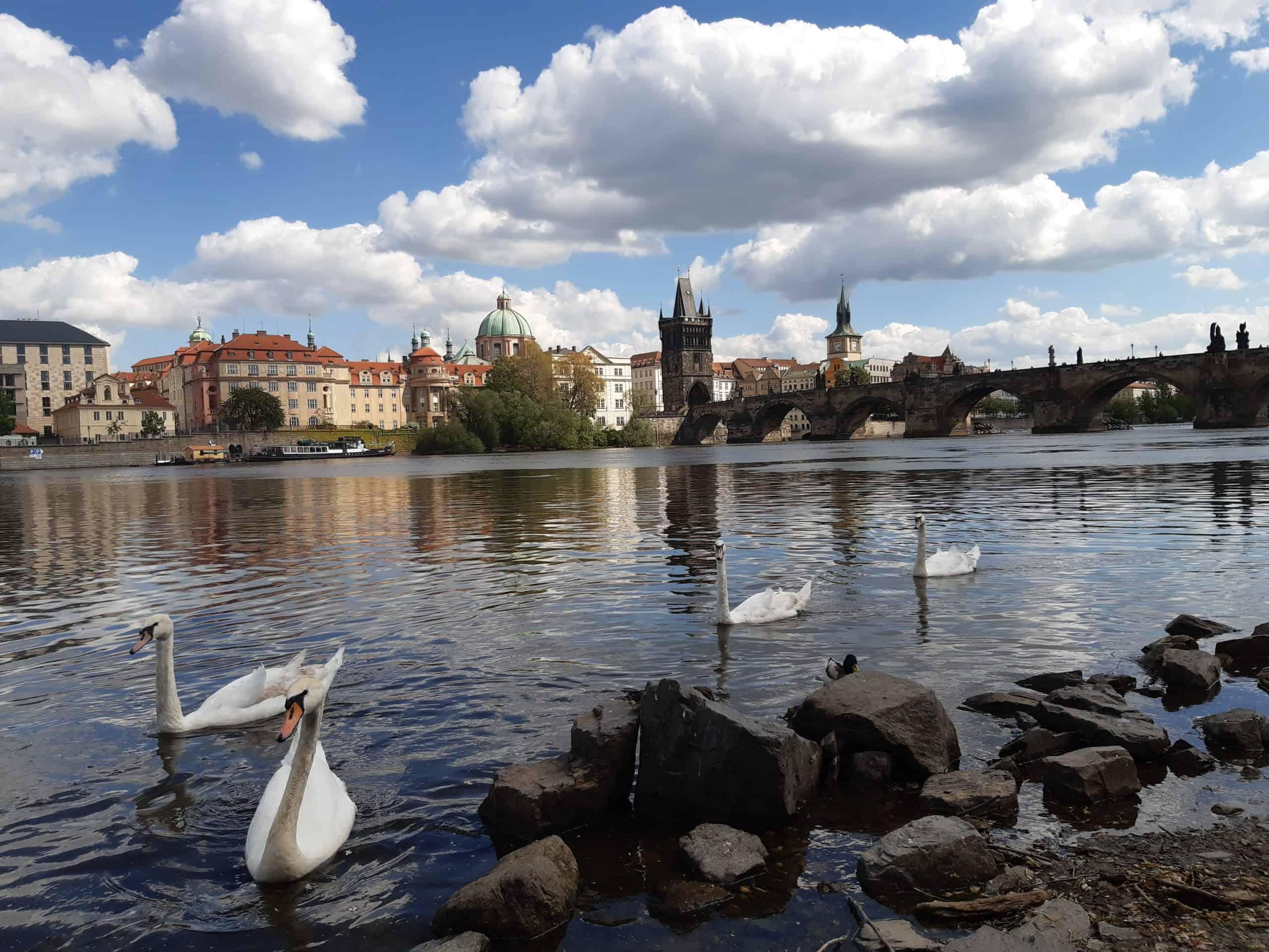 Kamv Praze s dětmi?