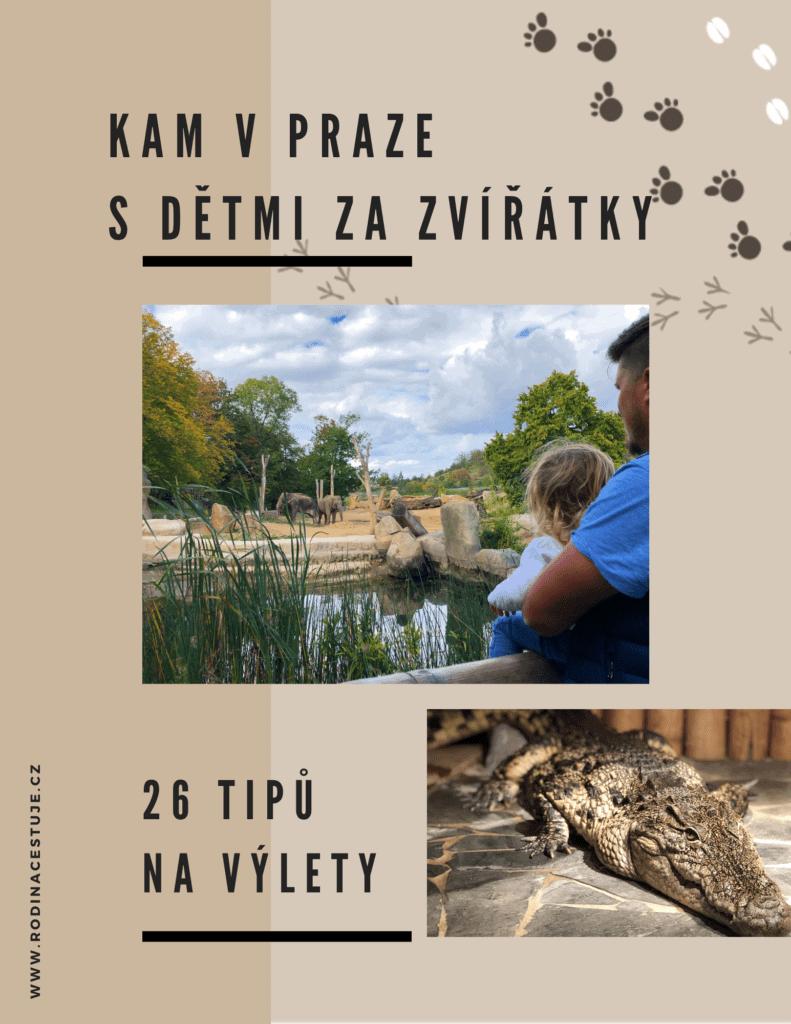 Kam v Praze s děti: Kam za zvířátky v Praze